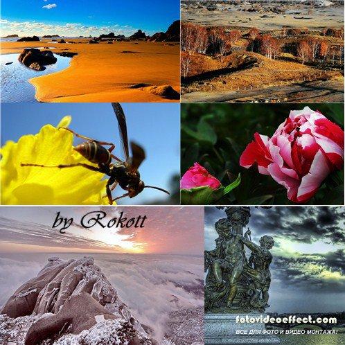Великолепные красоты природы № 113