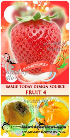Image Today Design Source Fruit #4