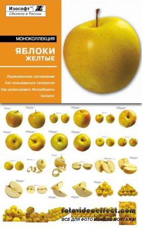 Izosoft - Yellow Apples (MC006)