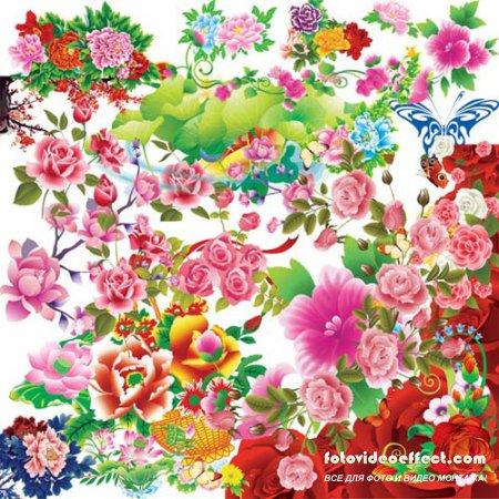 Цветы - качественный PSD клипарт на разных слоях