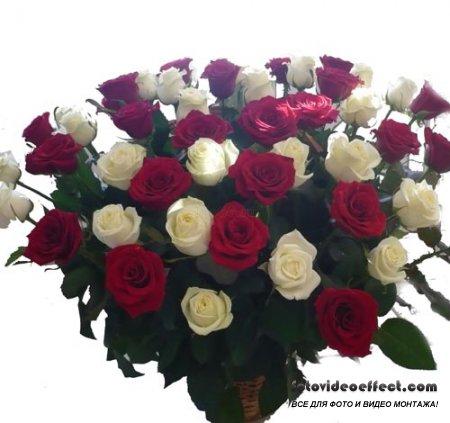 Красивый букет роз - Клипарт в PSD