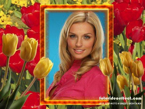 Фоторамка - Весенние тюльпаны