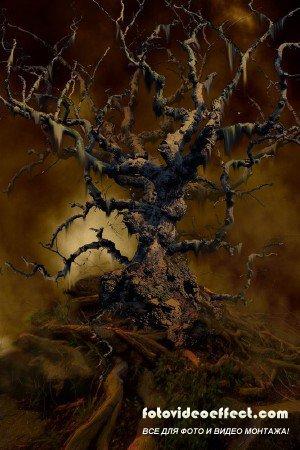 Шаблон для фотошоп мрачное дерево PSD