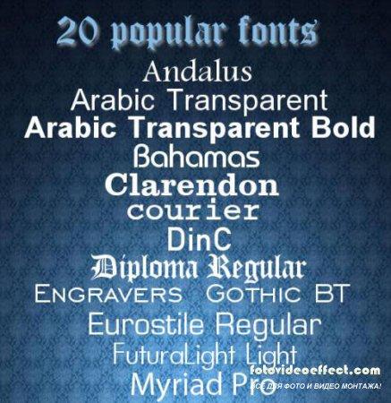20 популярных экслюзивных латинских шрифтов