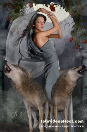 Шаблон для фото - Лунная соната