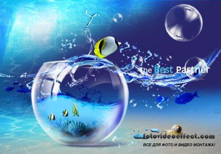 Blue glass ball drops PSD