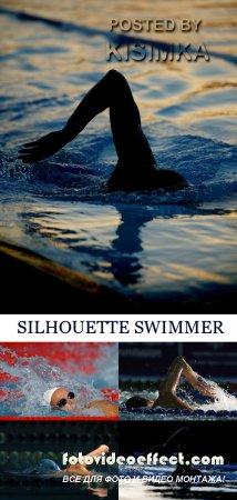 Stock Photo: SILHOUETTE SWIMMER