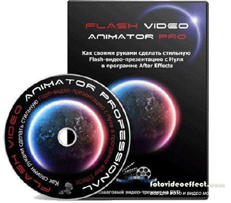 Видеокурс «Flash Video Animator professional»(2011)