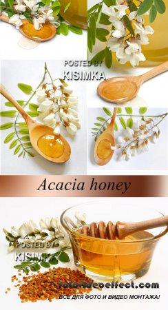 Stock Photo: Acacia honey