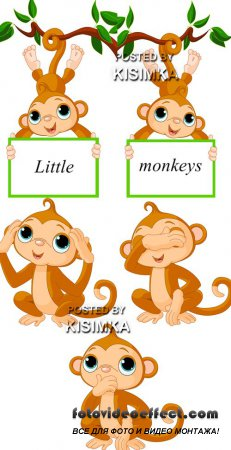 Stock: Little monkeys