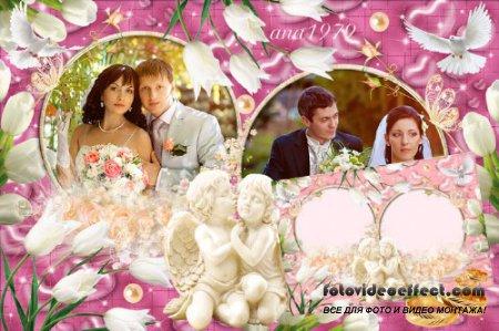 Рамка для фотошопа - Тюльпаны и ангелы