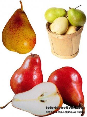 Фотосток: фрукты - груша